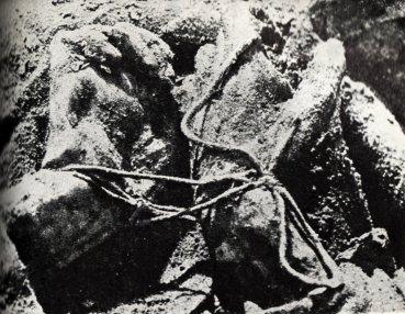 17262 katyn massacre